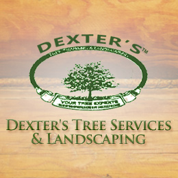 Dexter's Tree Services & Landscaping Listing Image
