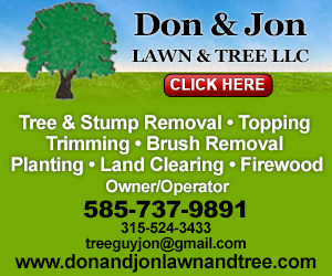 Don & Jon Lawn and Tree Service LLC Listing Image