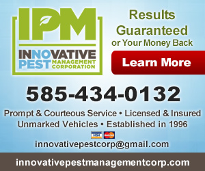 Innovative Pest Management, Corp. Listing Image