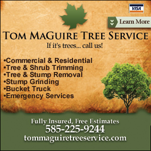 Tom MaGuire Tree Service Listing Image
