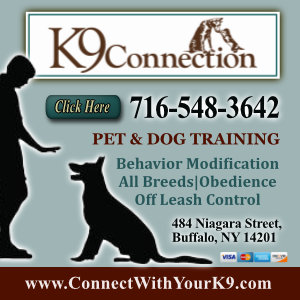 K 9 Connection Listing Image