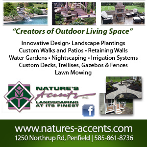 Nature's Accents Inc. Listing Image